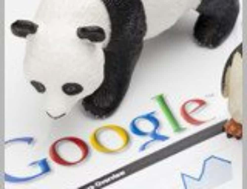 6 SEO Rules to follow (Penguin or Panda)